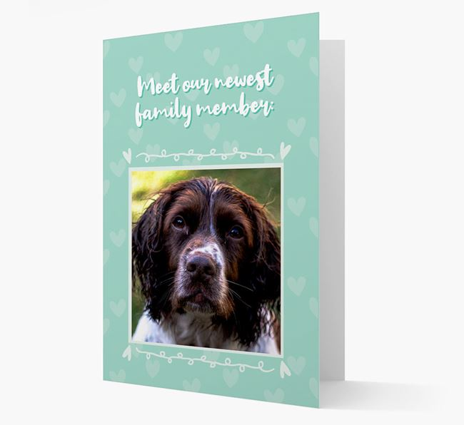 Photo Upload 'Meet our newest family member' Card with you Springer Spaniel Picture
