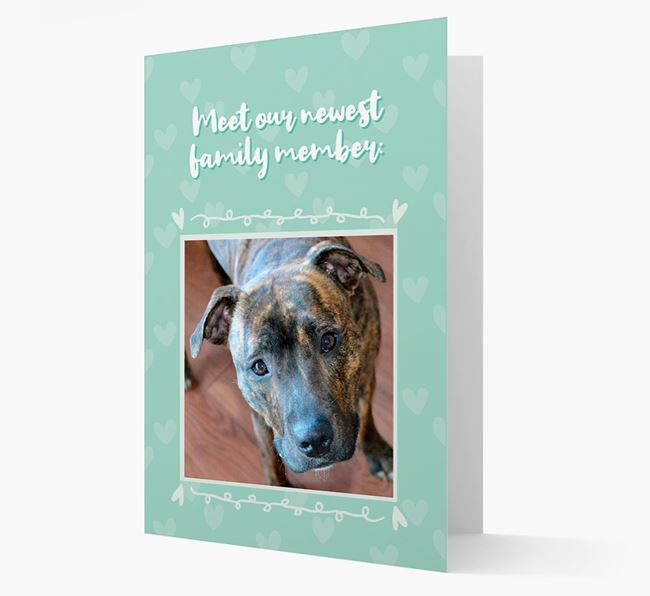 Photo Upload 'Meet our newest family member' Card with you Staffordshire Bull Terrier Picture