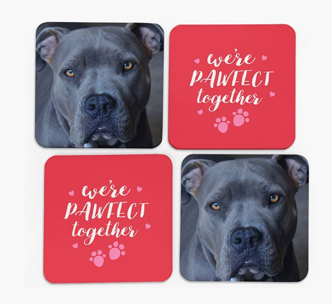 'We're Pawfect Together' Coasters with Photo of your American Pit Bull Terrier - Set of 4