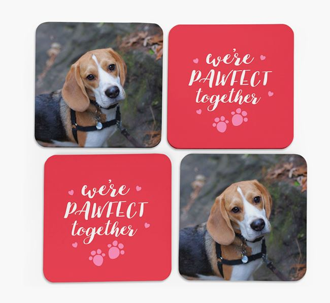 'We're Pawfect Together' Coasters with Photo of your Beagle - Set of 4