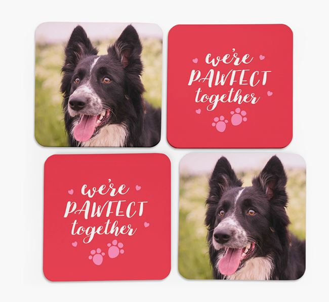 'We're Pawfect Together' Coasters with Photo of your Border Collie - Set of 4