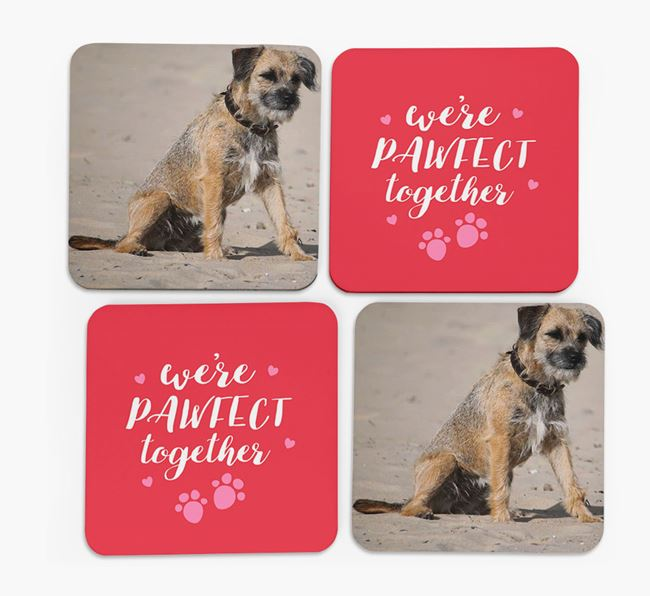 'We're Pawfect Together' Coasters with Photo of your Border Terrier - Set of 4