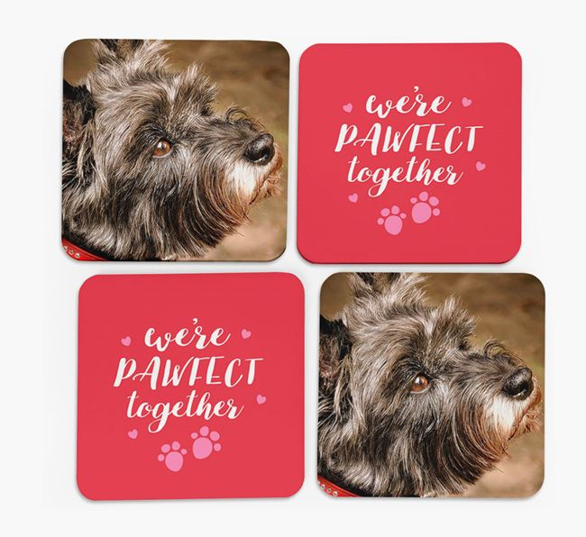 'We're Pawfect Together' Coasters with Photo of your Cairn Terrier - Set of 4