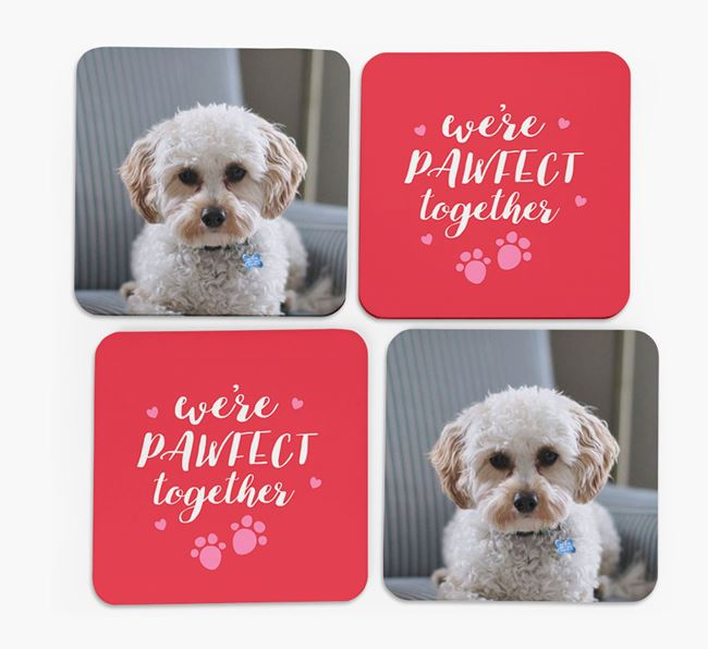 'We're Pawfect Together' Coasters with Photo of your Cavapoo - Set of 4
