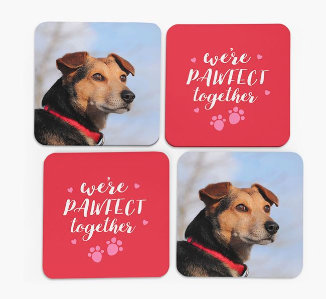 'We're Pawfect Together' Coasters with Photo of your Flat-Coated Retriever - Set of 4