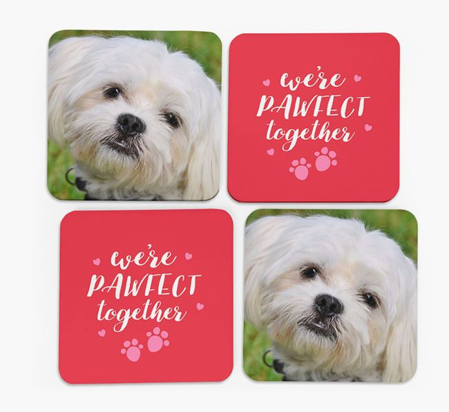 'We're Pawfect Together' Coasters with Photo of your Maltese - Set of 4