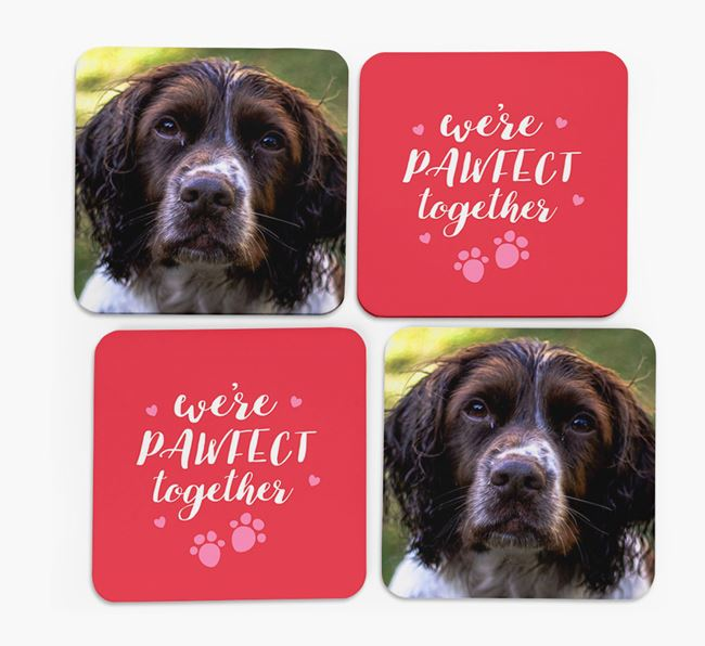 'We're Pawfect Together' Coasters with Photo of your Springer Spaniel - Set of 4