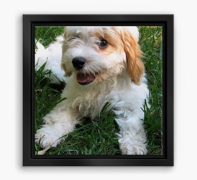 Photo Upload Boxed Canvas Print - Personalised with your Cavachon