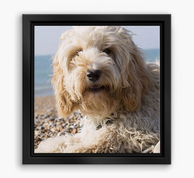 Photo Upload Boxed Canvas Print - Personalised with your Cockapoo