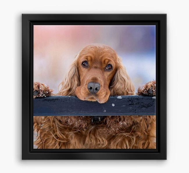 Photo Upload Boxed Canvas Print - Personalised with your Cocker Spaniel