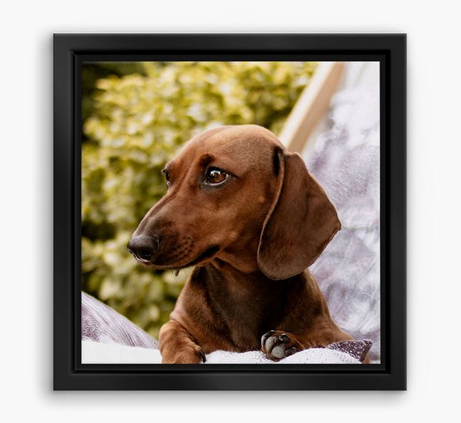 Photo Upload Boxed Canvas Print - Personalised with your Dachshund