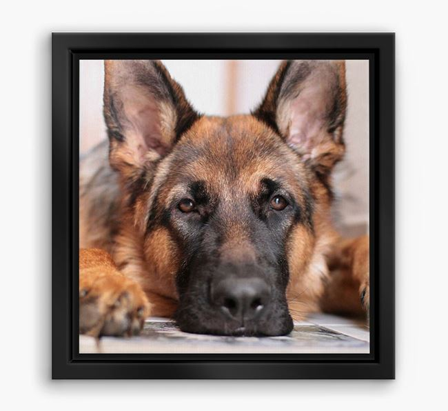 Photo Upload Boxed Canvas Print - Personalised with your German Shepherd