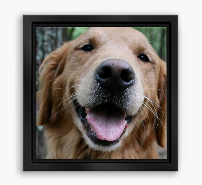 Photo Upload Boxed Canvas Print - Personalised with your Golden Retriever