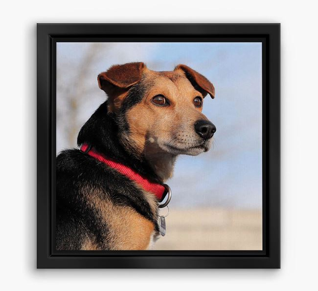 Photo Upload Boxed Canvas Print - Personalised with your Great Dane