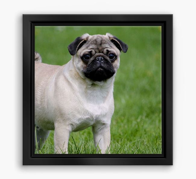 Photo Upload Boxed Canvas Print - Personalised with your Pug