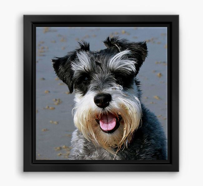 Photo Upload Boxed Canvas Print - Personalised with your Schnauzer