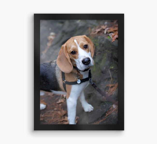 Photo Upload Framed Print - Personalised with your Beagle