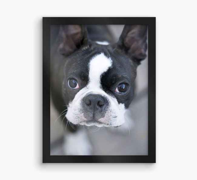 Photo Upload Framed Print - Personalised with your Dog