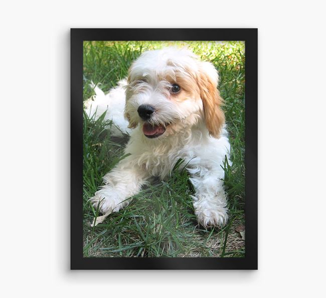 Photo Upload Framed Print - Personalised with your Cavachon