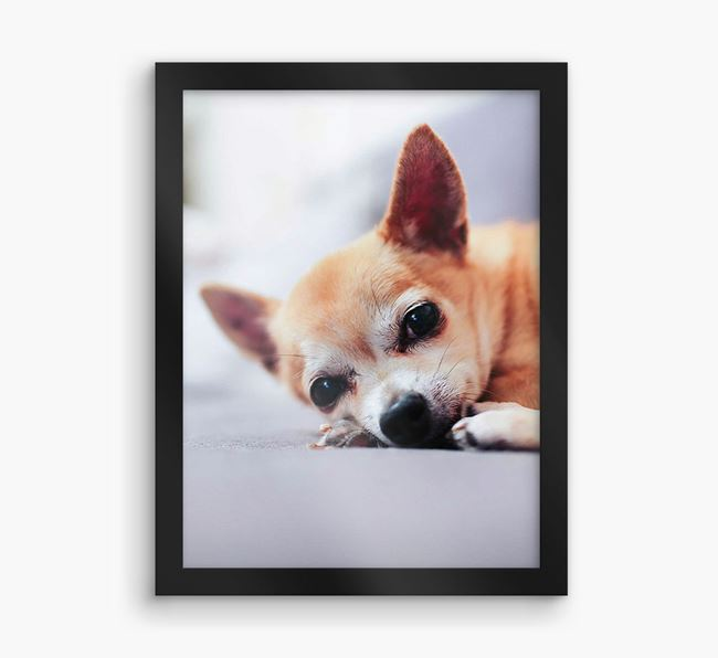 Photo Upload Framed Print - Personalised with your Chihuahua