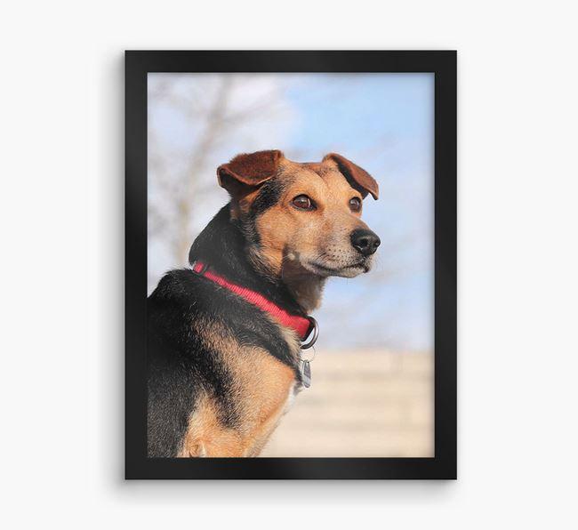 Photo Upload Framed Print - Personalised with your Corgi