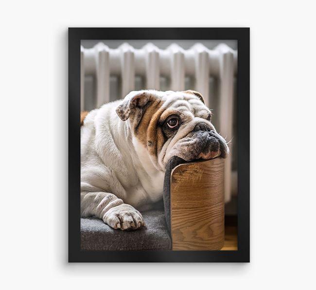Photo Upload Framed Print - Personalised with your English Bulldog