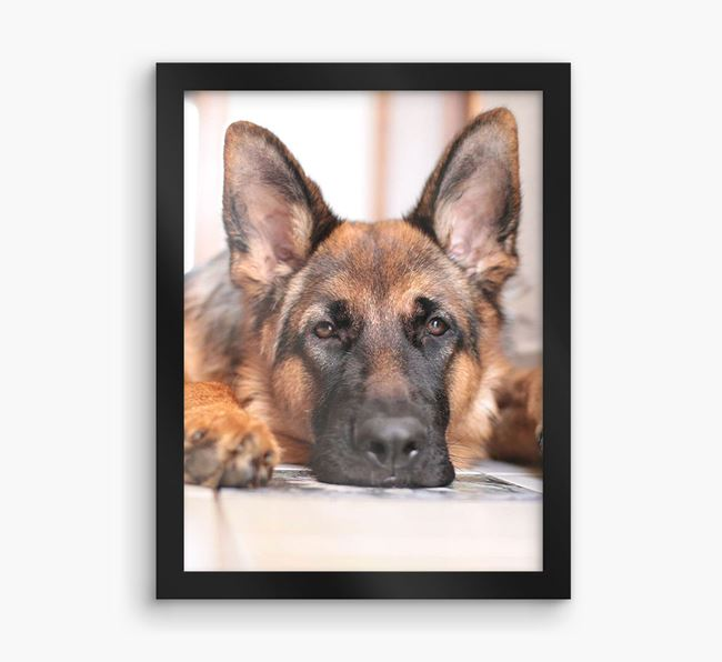 Photo Upload Framed Print - Personalised with your German Shepherd