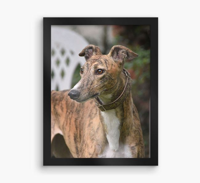 Photo Upload Framed Print - Personalised with your Greyhound
