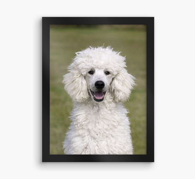 Photo Upload Framed Print - Personalised with your Poodle