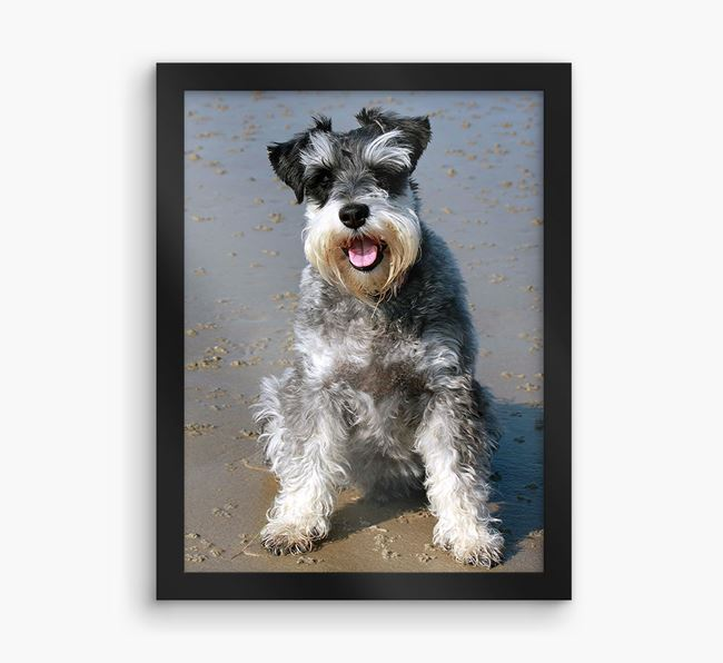 Photo Upload Framed Print - Personalised with your Schnauzer
