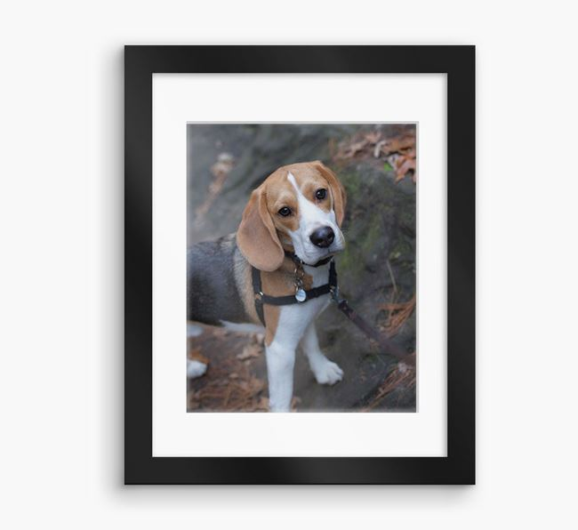 Photo Upload Framed Print with Mount - Personalised with your Beagle