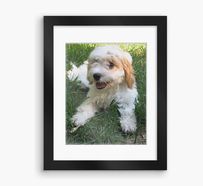 Photo Upload Framed Print with Mount - Personalised with your Cavachon