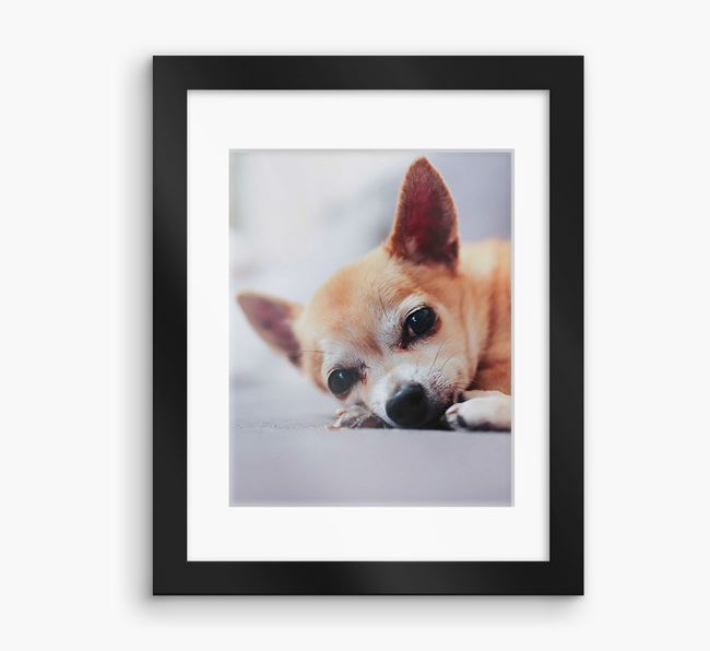 Photo Upload Framed Print with Mount - Personalised with your Chihuahua