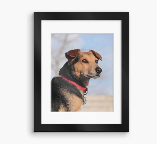 Photo Upload Framed Print with Mount - Personalised with your Corgi