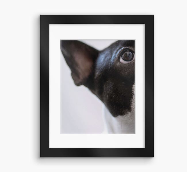 Photo Upload Framed Print with Mount - Personalised with your French Bulldog