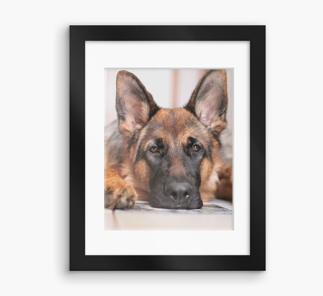 Photo Upload Framed Print with Mount - Personalised with your German Shepherd