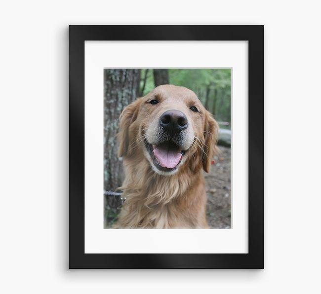 Photo Upload Framed Print with Mount - Personalised with your Golden Retriever