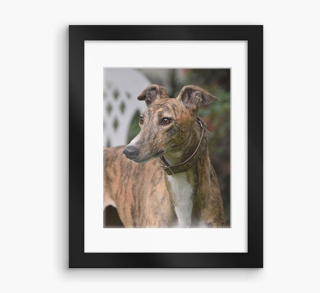 Photo Upload Framed Print with Mount - Personalised with your Greyhound