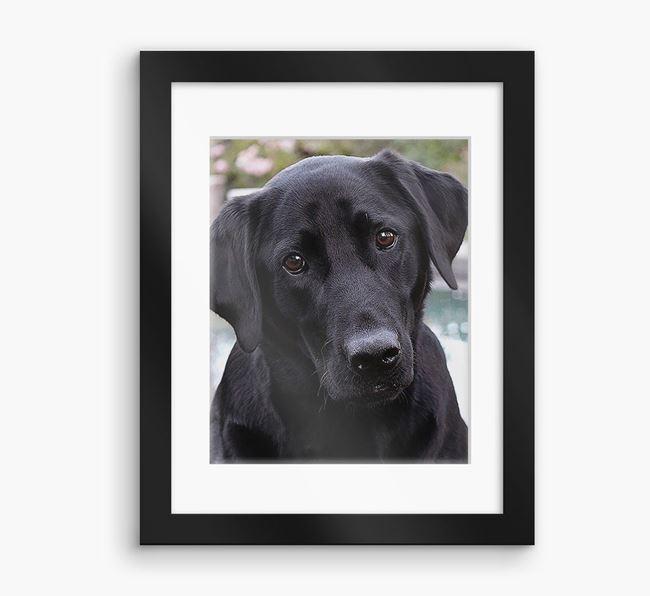 Photo Upload Framed Print with Mount - Personalised with your Dog