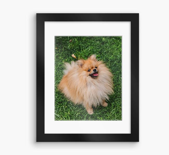 Photo Upload Framed Print with Mount - Personalised with your Pomeranian