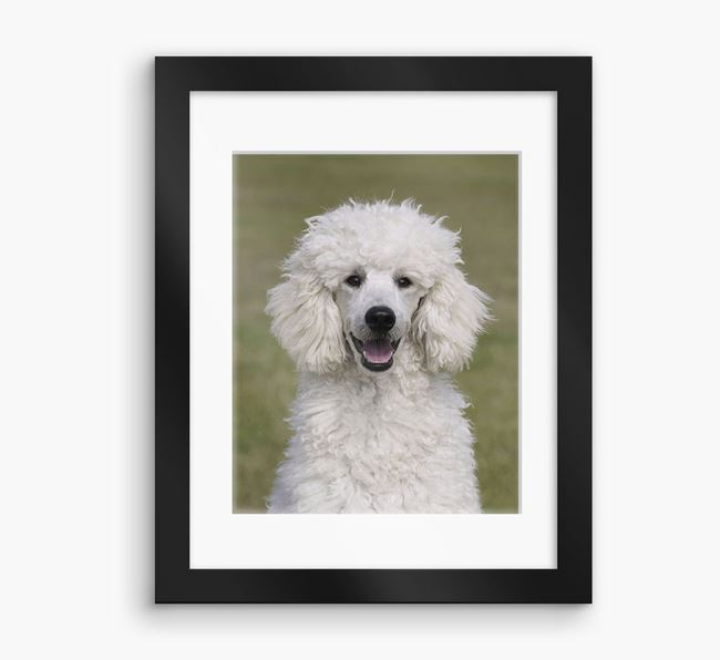 Photo Upload Framed Print with Mount - Personalised with your Poodle