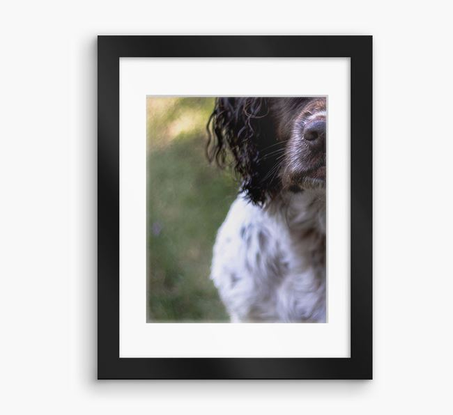 Photo Upload Framed Print with Mount - Personalised with your Springer Spaniel