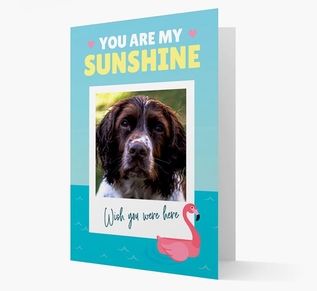 'You Are My Sunshine' Card with Photo of your Springer Spaniel