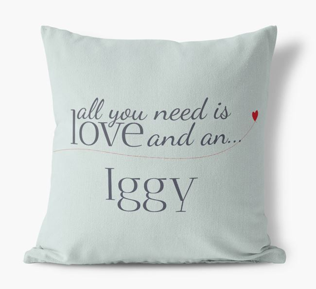 All you need is love and an Iggy Canvas Cushion