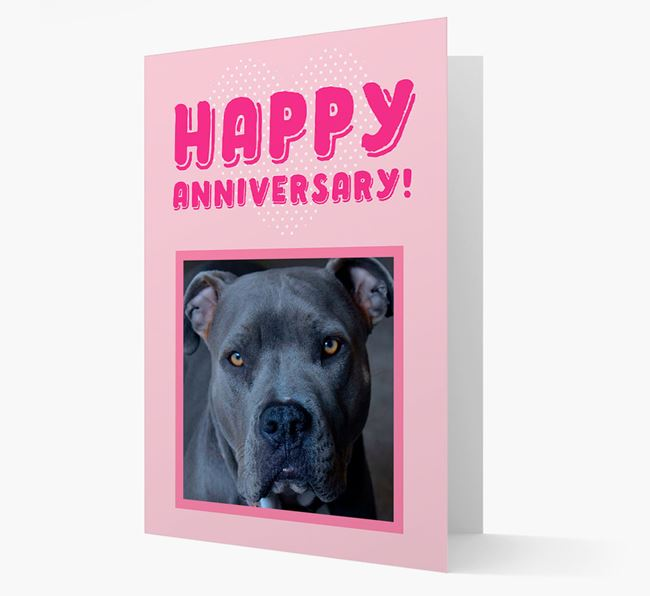 'Happy Anniversary!' Card with Photo of your American Pit Bull Terrier