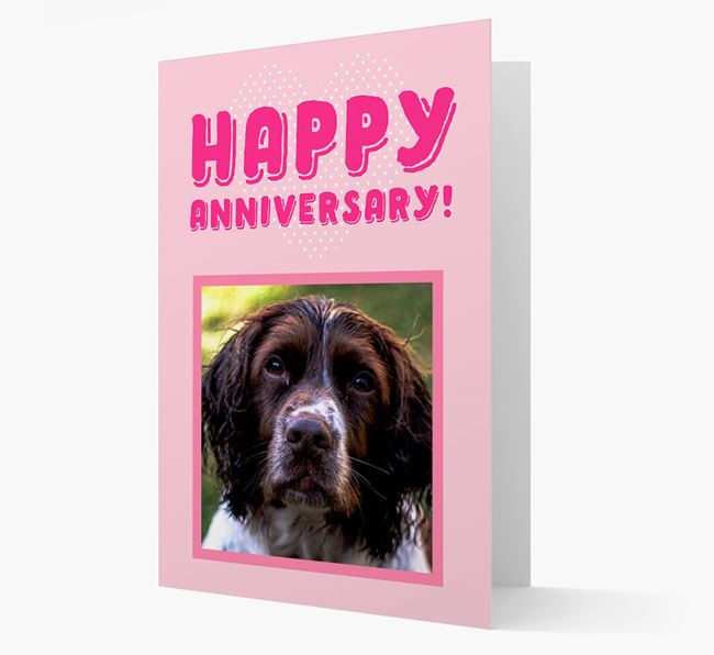 'Happy Anniversary!' Card with Photo of your Springer Spaniel