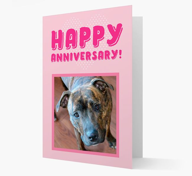 'Happy Anniversary!' Card with Photo of your Staffordshire Bull Terrier