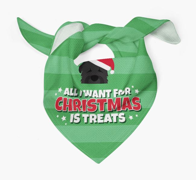 'All I Want for Christmas' - Personalised Black Russian Terrier Bandana