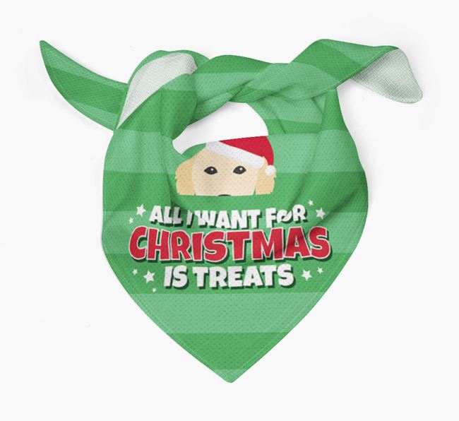 'All I Want for Christmas' - Personalized Golden Retriever Bandana