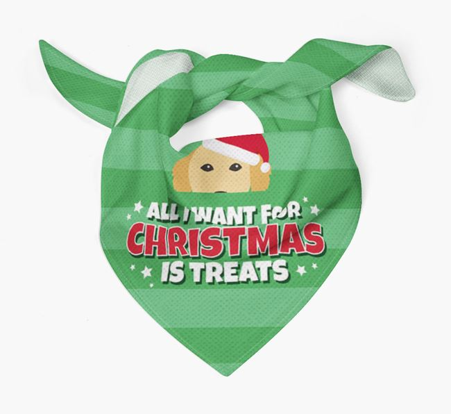 'All I Want for Christmas' - Personalised Golden Retriever Bandana